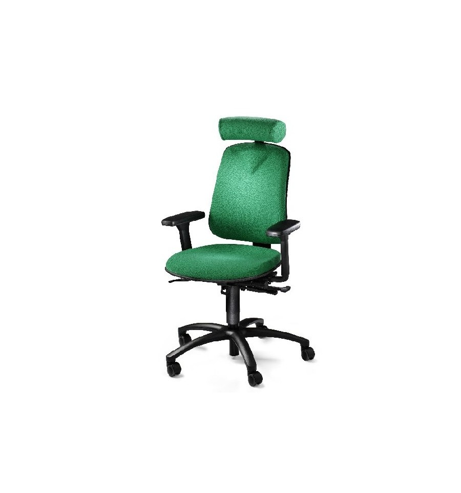 products ergonomic chairs back care chairs back care chair