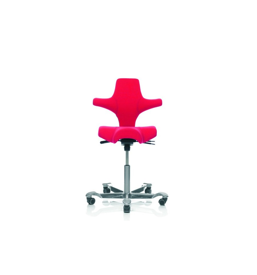Sit Stand Office Chairs Hag Capisco 8106 For Contempory