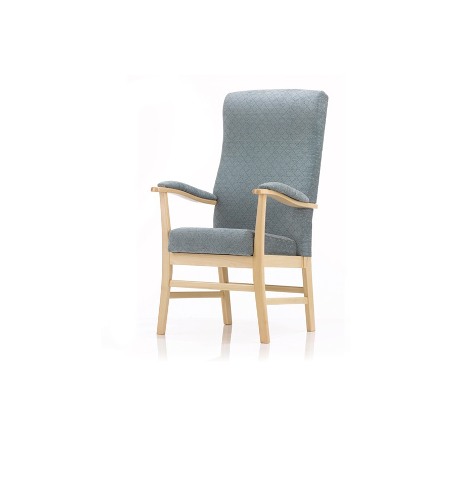 Home Chair: Orthopaedic Chair Back Care Armchair Specialists For Pain