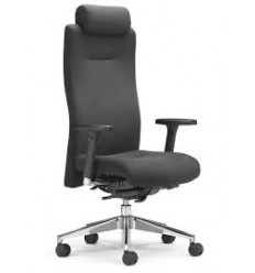 Ergo Executive Chair K304