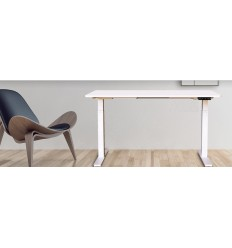 Platinum Homeworkers Package - HAG Capisco Chair 3801 and Elevate 2 Sit-Stand Desk