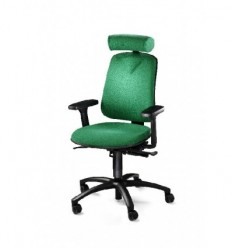 Back Care Chair HM360
