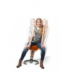 Swopper 3D Chair