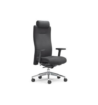 Ergo Executive Chair K304