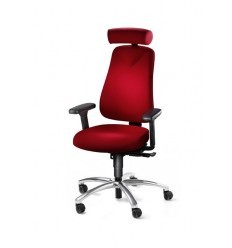 Ergonomic Office Chair for Coccyx Pain HM380C