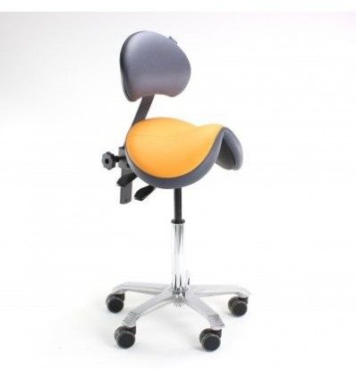 Best saddle with back support