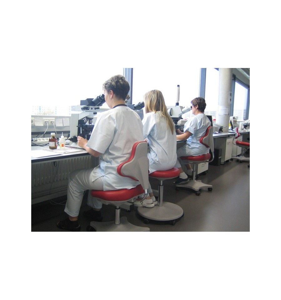 Laboratory Chair Chairs For Labs Ergonomic