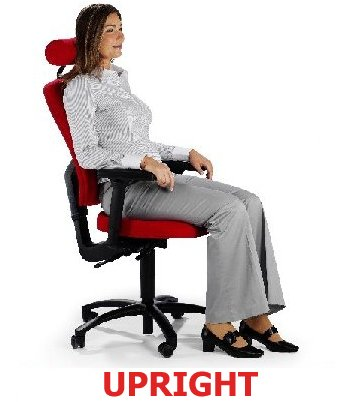 Upright posture with full support HM Back Chairs
